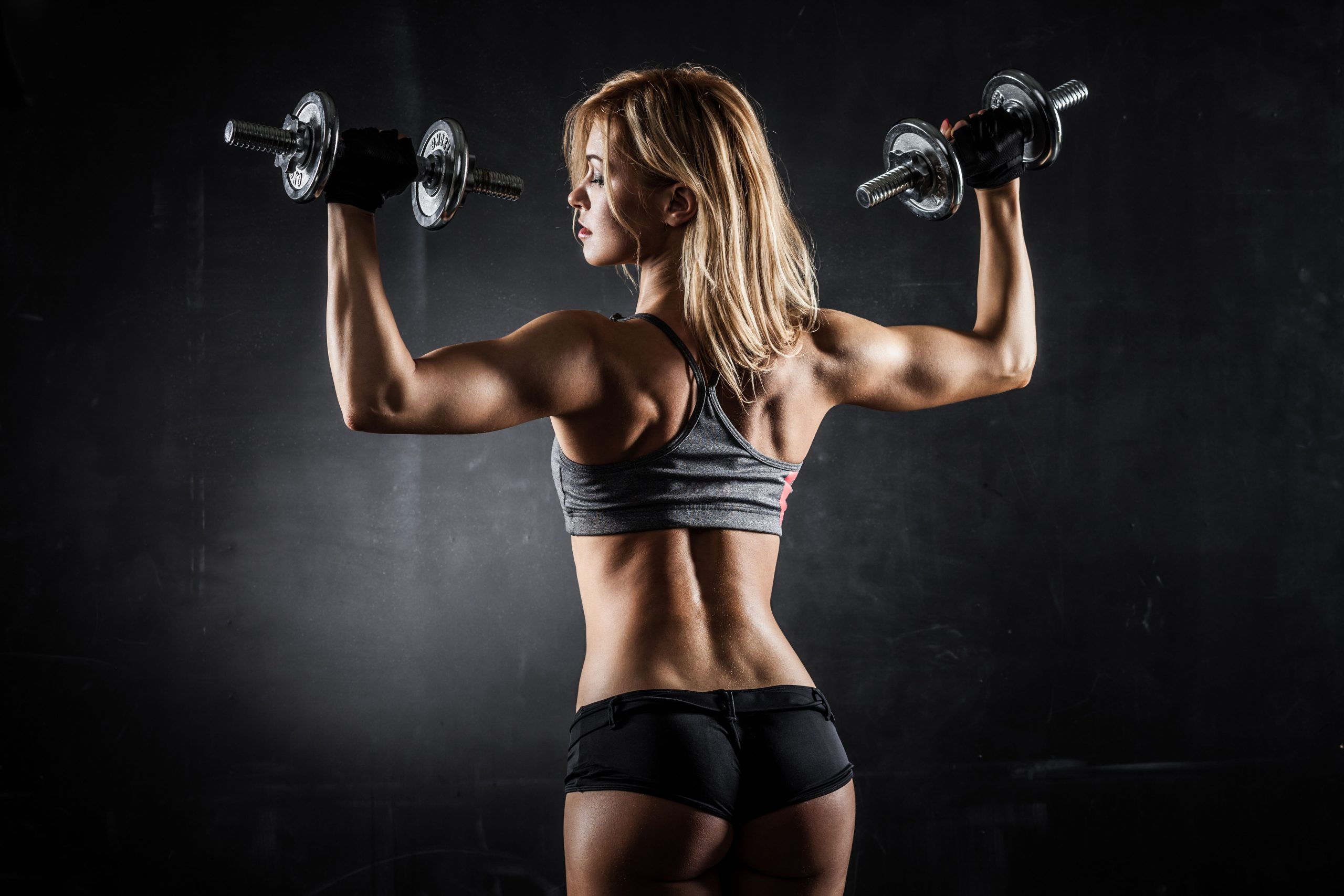 3 Knockout Training Guides