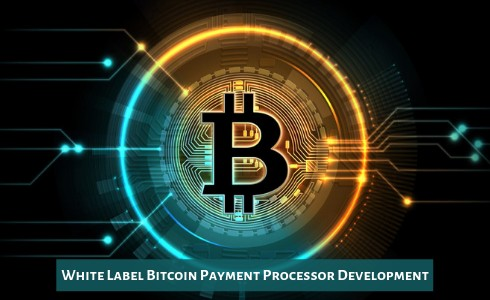 Savvy People Do Bitcoin Payment Gateway